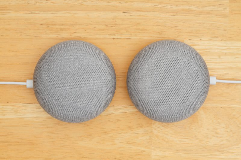 two Google home devices