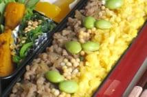 料理写真コンテスト優勝の弁当は見た目と栄養最高のそぼろ弁