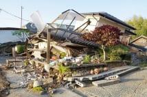 芥川龍之介は藤の花を見て地震予知 植物学者の見解は?