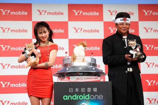 Y!mobileのCMに登場する猫と田中美奈子、哀川翔