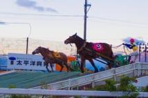 客も並走する「ばんえい競馬」は道内でも十勝のみ