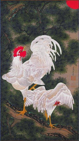 伊藤 若冲 鶏