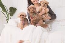 浅田舞 「生活は愛犬中心。犬のために広い家へ引っ越した」