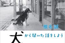 【嵐山光三郎氏書評】シーナ節の解説が写真をより味わい深く