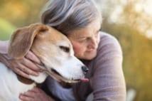 ペットの介護がテーマの漫画『犬を飼う…』に称賛の声止まず