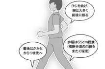 小泉純一郎と加山雄三、2人に共通する「速歩き」の効果