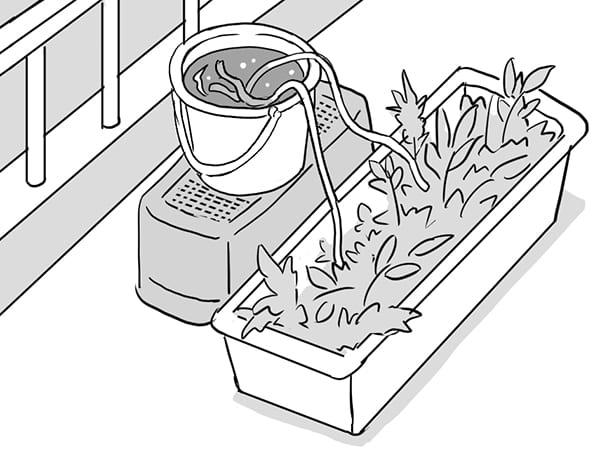 長期留守時はお手製水やり機を作ろう(イラスト/飛鳥幸子)