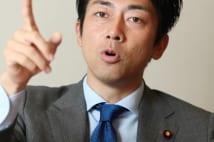 7月参院選前の内閣改造 桜田氏と片山氏去り進次郎氏入閣か