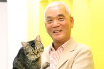 世界ネコ歩きの岩合光昭氏が映画監督に挑戦、ねこ名優も出演