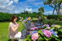 『石垣メモリアルパーク』内の「花想」は、沖縄の花々に包まれた樹木葬