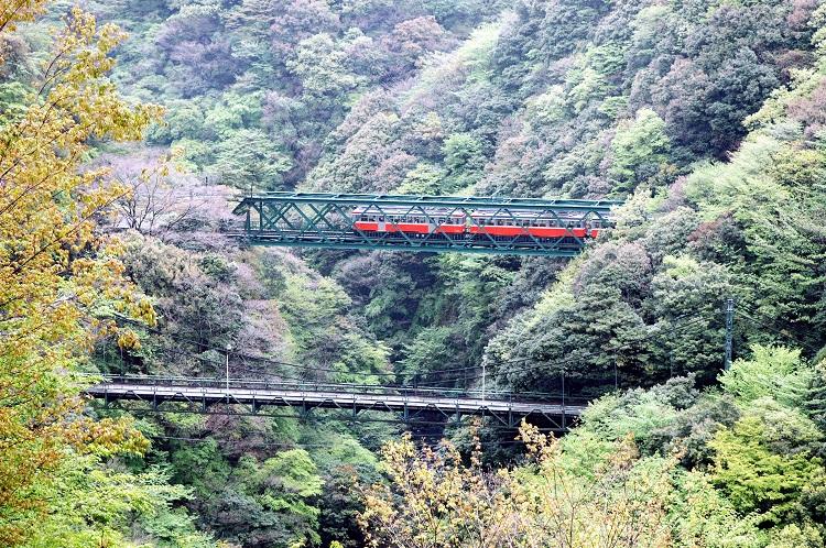 早川橋梁を走る箱根登山鉄道