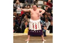 白鵬を名古屋場所で追い込むのは貴景勝の先輩・大栄翔か