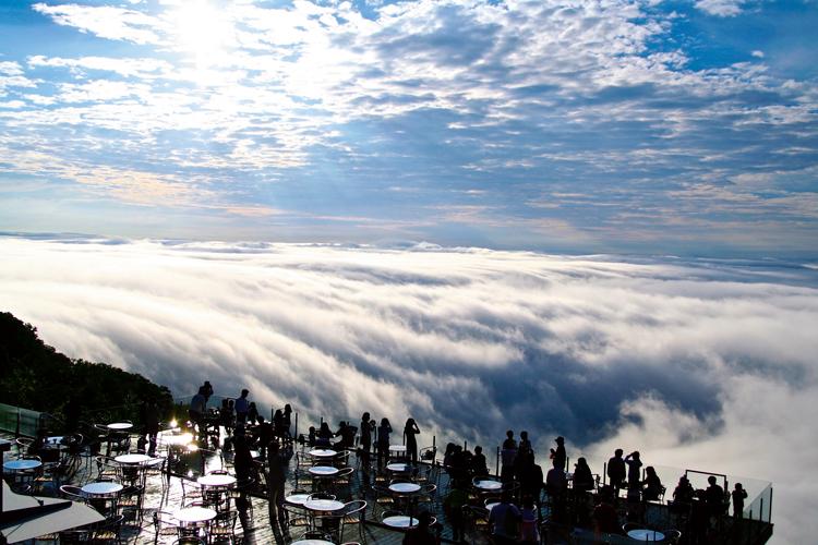 流れ込む雲海に手が届きそうな「雲海テラス」