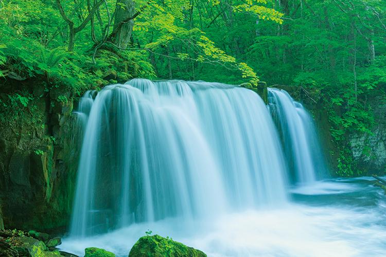 深緑に包まれマイナスイオンたっぷりの「奥入瀬渓流」