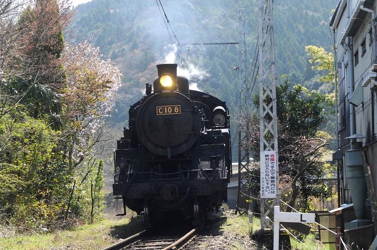 SL運行で人気を集める大井川鉄道は、トーマス列車や星空列車の運行で新たな需要の掘り起こしを目指す
