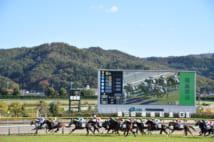 今年の秋は「1勝クラス」が最大7レース組まれていた