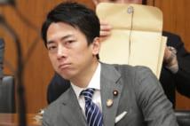 衆院環境委員会で佐藤ゆかり副大臣(左)と話す小泉進次郎環境相=8日、国会内