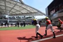 若駒の将来を占う一戦(阪神競馬場のパドック)