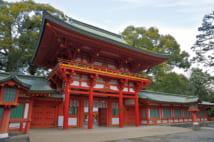 埼玉大宮・武蔵一宮 氷川神社(写真/アフロ)
