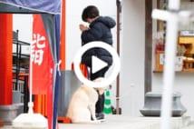 【動画】滝川クリステル 男児誕生! 出産直前、神社で手を合わせる姿
