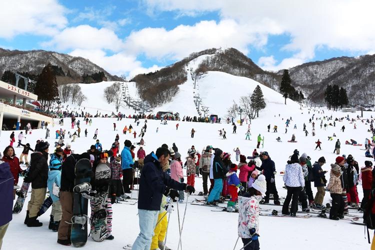 近年は外国人観光客が多い日本のスキー場(写真提供/奥伊吹観光株式会社)