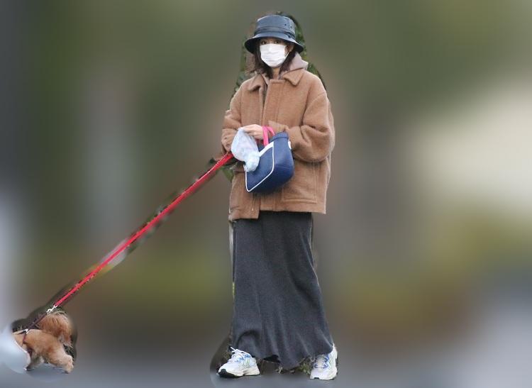 愛犬の散歩をする桐谷美玲