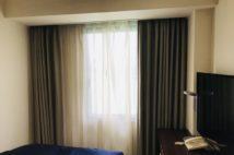 五輪前の活況も一転、厳しい経営を強いられているホテル業界