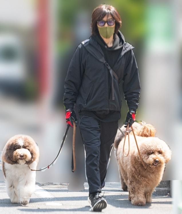 木村拓哉が飼っている犬