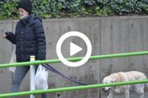 【動画】滝川クリステルの厳戒育児 外出はほぼ愛犬の散歩のみ