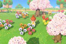『あつ森』人気のヒミツとは!?(C)2020 Nintendo