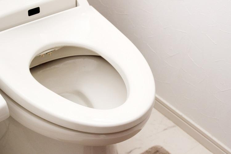 毎日のトイレからでも分かることは多いという(イメージ)