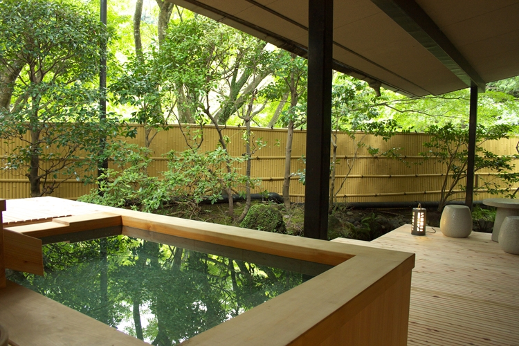 海石榴(神奈川県・湯河原)