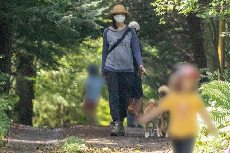 日本有数の別荘地で目撃