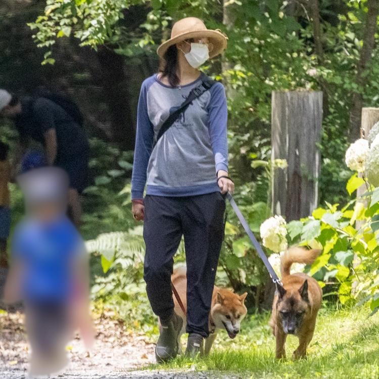 犬と子供を連れ、緑あふれる道を歩く