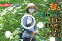 【動画】杏と東出昌大の自宅、所有権に決着がついていた