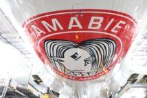 アマビエが描かれた飛行機「アマビエジェット」(日本航空提供)
