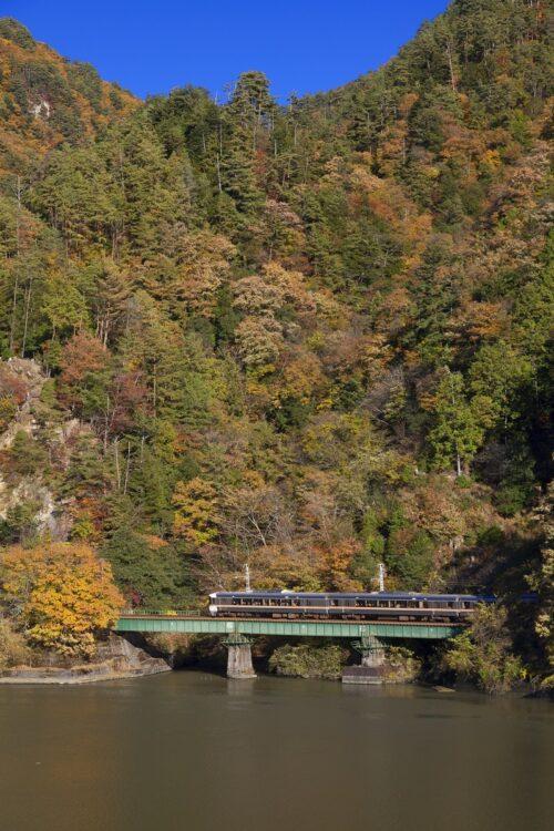 紅葉のJR飯田線を走る秘境駅号と天竜川(時事通信フォト)