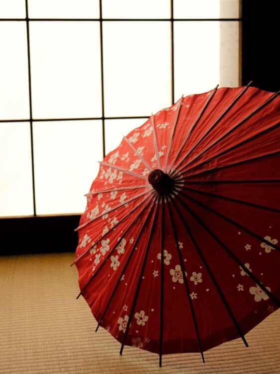 江戸時代の「挟まれたい願望」とは?(イメージ)