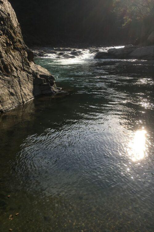 キャンプ場の脇を流れる清流・道志川(筆者撮影)