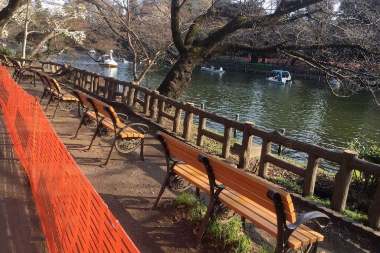 池の畔一帯が閉鎖されている井の頭公園(筆者撮影)