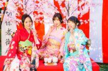 美女3人のグラビア「さくらを見る会」2021開演!