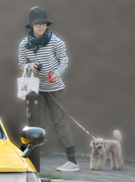 日焼け対策をして愛犬と散歩