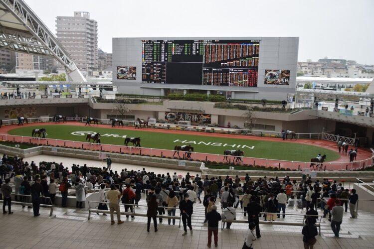 阪神競馬場のパドック