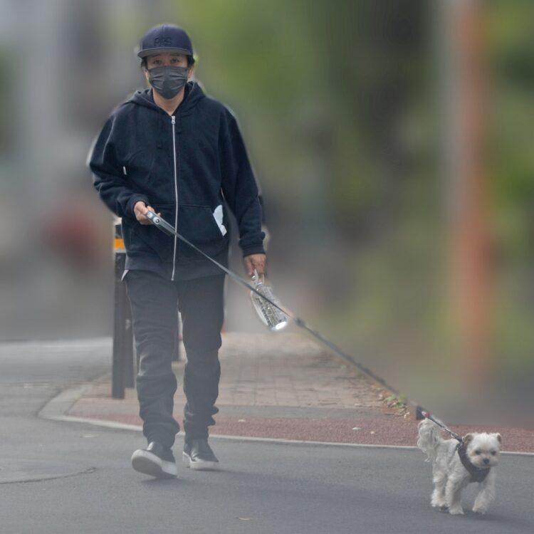 ライブ前に愛犬ロックくんと散歩するフミヤ