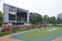 東京競馬場のパドック