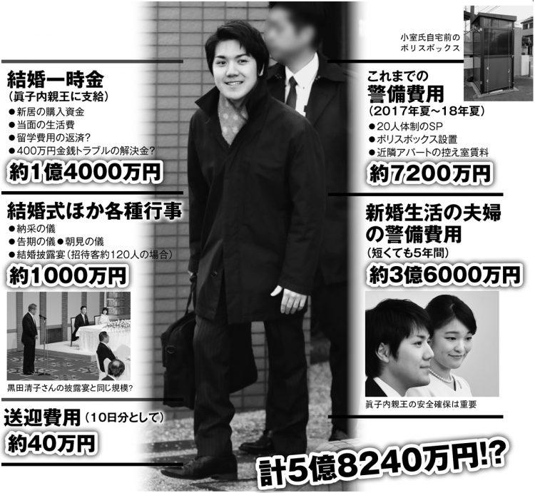 眞子さまと小室圭氏が結婚した場合、使われるとされる税金をシミュレーション