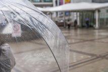 「気づけば家には10本も…」傘をよく忘れる、失くす人たちの諦めの境地