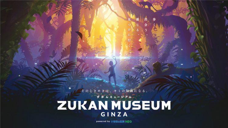 デジタル体験型施設「ZUKAN MUSEUM GINZA」が東急プラザ銀座6階にオープン