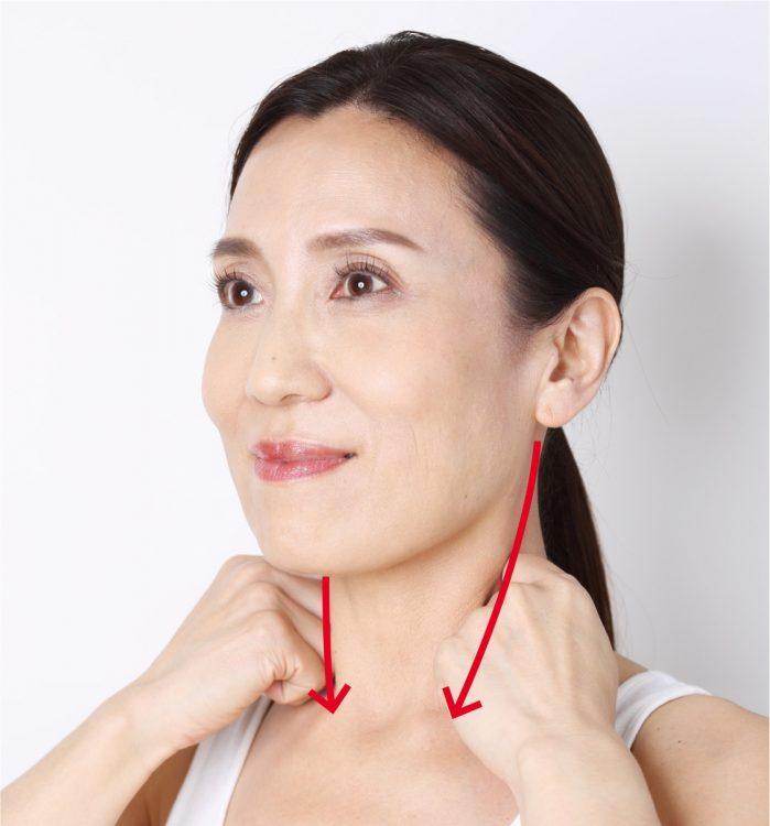 【2】耳下腺から鎖骨に