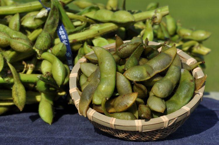 枝豆にはアルコールの分解を促す効果も